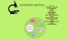 Copy of DOMINIO ARCHEA