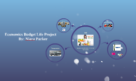 Economics Budget Life Project