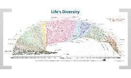 #1 - Life's Diversity