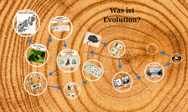 Was ist Evolution