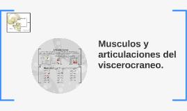 Musculos y articulaciones del viscerocraneo.