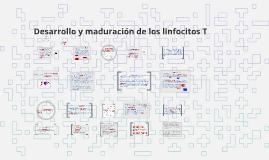 Desarrollo y maduracion de los linfocitos T