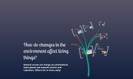 How do changes in the environment affect living things?