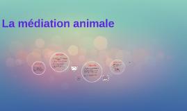 La médiation animale