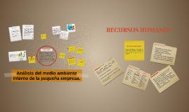 Copy of Análisis del medio ambiente interno de la pequeña empresa.
