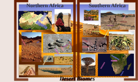 African Desert  Biomes