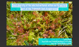 Floral diversity of the selected wetlands within northwester