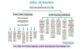 Copy of MAPA CONCEPTUAL-NIÑEZ INTERMEDIA
