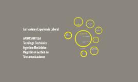 Curriculum y Experiencia Laboral