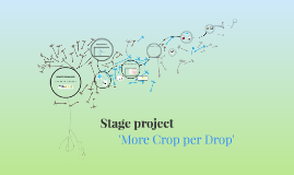 Copy of Stage NWP