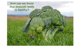 is broccoli really healthy?