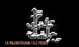 LA PALEONTOLOGIA I ELS FÒSSILS