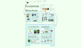 Copy of AP Bio- Interactions 5: Ecosystem Structure