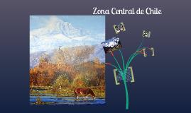 Copy of Zona centro