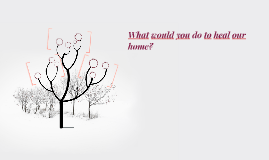 What would yo do to heal our home?