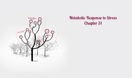 Metabolic Response to Stress