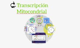 Transcripción Mitocondrial