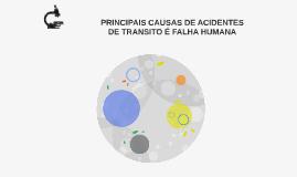 PRINCIPAIS CAUSAS DE ACIDENTES DE TRANSITO É FALHA HUMANA