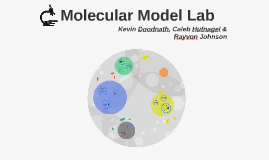 Molecular Model Lab