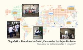 Diagnostico Situacional de Salud, Comunidad Las Lajas Ponien