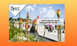 Mise en débat du rapport Développement Durable 2014