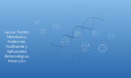 Lacasa: Fuentes Microbianas, Producción, Purificación y Apli