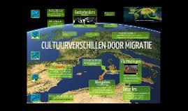 Cultuurverschillen door migratie