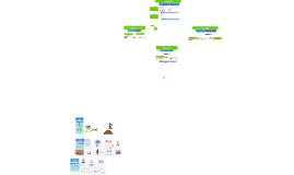 Plan de Marketing Social