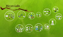 Bio 101 Lab