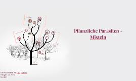 Parasiten - Misteln