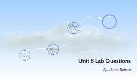 Unit 8 Lab Questions