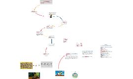 Copy of Bronfenbrenner's Bioecological Model of Development