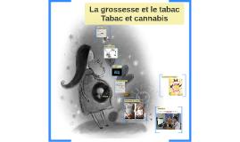 La grossesse et le tabacTabac et cannabis