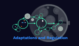 Adaptations and Regulation