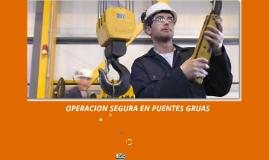 Copy of OPERACIÓN SEGURA EN PUENTES GRUAS