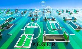 P.E.G.E.R