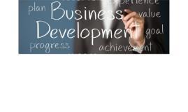 Business Development Dollars