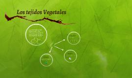 Los tejidos Vegetales