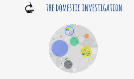 the domestic investigation