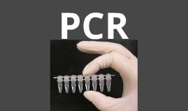 Copy of PCR