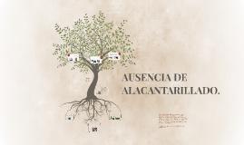 AUSENCIA DE ALACANTARILLADO.