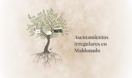 Asentamientos irregulares en Maldonado