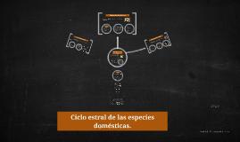 Copy of Ciclo estral de las especies domésticas.