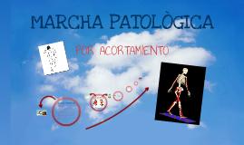 EXPOSICIÓN MARCHA PATOLOGICA