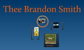 Brandon Plaza