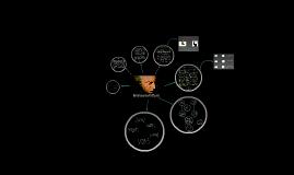 Immanuel Kant (IV° Medio)