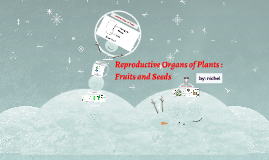 reproductive organs of plants : fruits and seeds