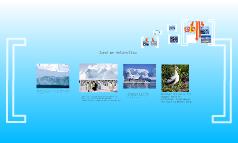 Antarctica: Constantina