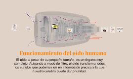Funcionamiento de oido humano