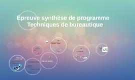 Épreuve synthèse de programme